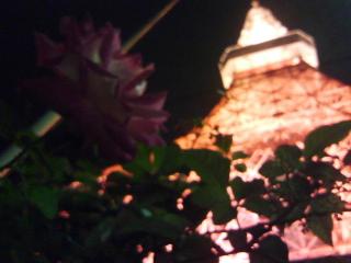 東京タワーの前にある柵には薔薇が咲いている