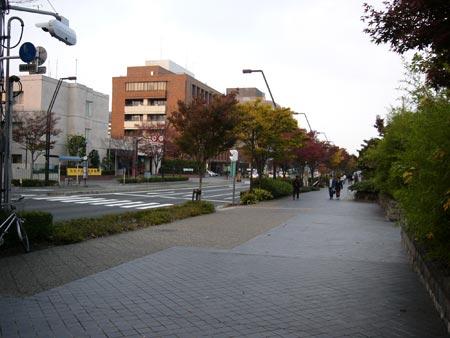 2004_11_07_04.jpg