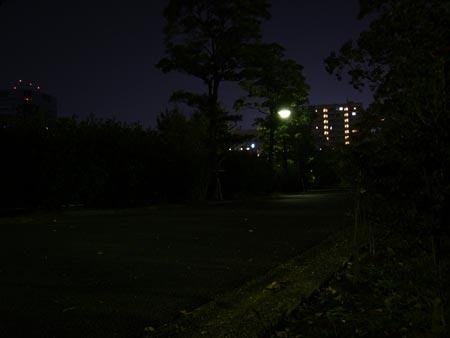 2004_11_07_07.jpg